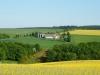 Ein Stückchen weiter können Sie im Frühjahr bei blühenden Rapsfeldern diese wunderschöne Aussicht auf die Aussiedlung auf dem Büchelchen der Familie Schnurr genießen.