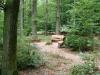 """Ein Blick in unseren """"Regenbogenwald"""". Hier kann die Asche von Kindern, die allzu früh schon vor, während oder nach der Geburt gestorben sind, kostenlos beigesetzt werden. Die Sitzgruppe ist geeignet, zu einer Begegnungsstätte betroffener Eltern zu werden."""